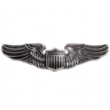 Pilot wings air force badge, use 1941 (world war II)